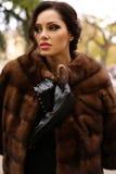 有黑发的华美的肉欲的妇女在豪华皮大衣和皮手套 免版税库存照片