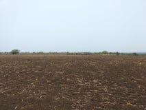 有黑土壤的土地 免版税库存图片
