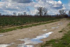 有水坑的乡下公路 免版税图库摄影