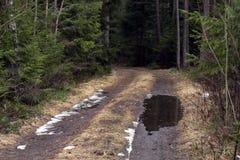 有水坑的土路 库存照片