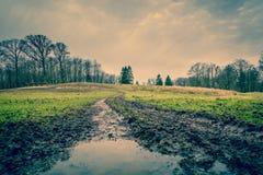 有水坑的泥泞的路 免版税库存照片