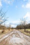 有水坑的肮脏的乡下公路在早期的春天 库存照片