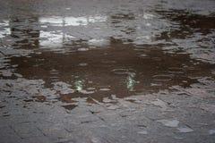 有水坑的边路 库存照片
