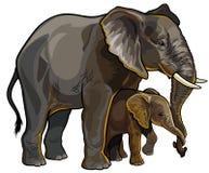 有婴孩的大象母亲 库存照片