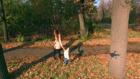 有婴孩走的母亲室外 顶视图, dron直升机 秋天 影视素材