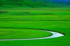 有绕小河的绿色草甸 免版税库存照片