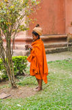 有头巾的妇女在阿萨姆邦 免版税库存图片