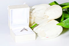 与箱子的白色春天郁金香有钻戒的 库存照片
