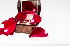 有钻戒的红色玫瑰花瓣在白色 免版税图库摄影