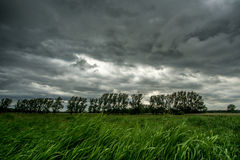 有黑暗的云彩的绿色草甸 免版税库存图片