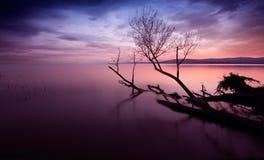 有黑暗的云彩的Sunset湖 免版税图库摄影