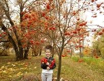 有黑暗的卷发的逗人喜爱的女孩在有花楸浆果花束的秋天森林里  库存照片