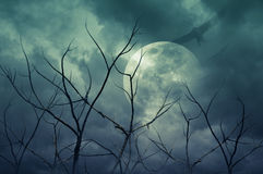 有满月的,死的树,万圣夜背景鬼的森林 免版税库存照片