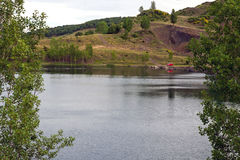 有结构树的湖 免版税库存照片