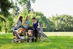 有读正文消息的婴儿车的母亲 免版税库存图片