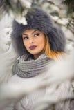 有黑毛皮盖帽和灰色披肩的可爱的妇女享受冬天的 前面观点的有构成的时兴的深色的女孩 免版税图库摄影