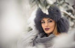 有黑毛皮盖帽和灰色披肩的可爱的妇女享受冬天的 前面观点的有构成的时兴的深色的女孩 库存照片