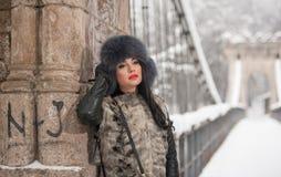 有黑毛皮盖帽和灰色背心的可爱的妇女享受冬天的 侧视图时兴深色女孩摆在 库存照片