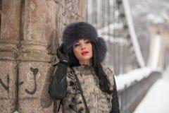 有黑毛皮盖帽和灰色背心的可爱的妇女享受冬天的 侧视图时兴深色女孩摆在 库存图片