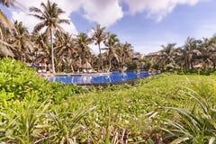 有水池和遮光罩的热带庭院全景 免版税库存图片
