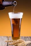 有玻璃和麦子的啤酒瓶在金黄背景 库存照片