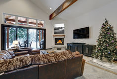 有玻璃滚滑门的拱顶式顶棚客厅对露台 库存图片