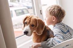 有他的一起等待在windo附近的小狗朋友的小男孩 免版税库存照片