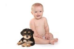 有他的宠物茶杯Yorkie小狗的可爱的男婴 免版税库存照片
