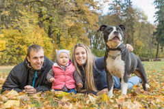 有他们的小女儿和狗的年轻父母 免版税库存图片
