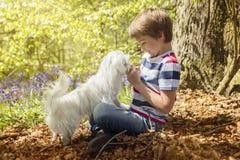 有他的小狗的Littlel男孩在森林里 免版税库存照片