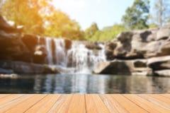 有轻的瀑布的绿色森林 免版税库存图片