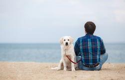 有他的狗的人在坐回到照相机的夏天海滩 库存图片