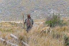 有他的狗的年迈的农夫在乡下 库存图片