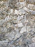 有轻的石头的石墙 免版税图库摄影