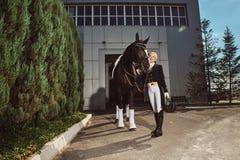 有他的马的妇女骑师 库存图片