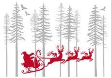 有他的驯鹿的圣诞老人在冷杉森林,传染媒介里 库存照片