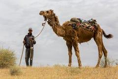 有他的骆驼的一个人在Kyzylkum沙漠在乌兹别克斯坦,看看我 图库摄影