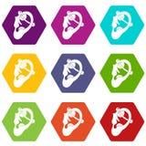 有贯穿的象集合颜色hexahedron的人的耳朵 库存照片
