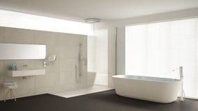 有浴缸的最低纲领派卫生间和阵雨、镶花地板和m 皇族释放例证