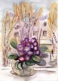 有紫罗兰的罐 库存图片