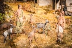 有绵羊牧群的牧羊人 库存照片
