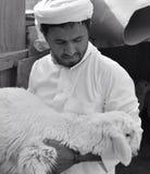 有绵羊的牧羊人 免版税库存图片