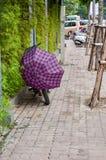有紫色伞的自行车 库存照片