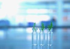 有绿色叶子的小玻璃小瓶用橙色解答滴下  库存图片