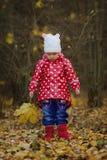 有黄色叶子的小滑稽的女孩 库存图片