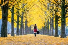有黄色叶子的美丽的女孩在娜米海岛,韩国 库存照片