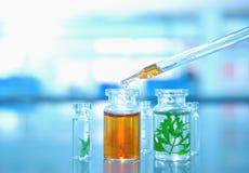 有绿色叶子的玻璃小瓶有橙色解答下落的在实验室里 免版税图库摄影