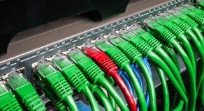 有绿色和红色互联网插接线的服务器机架缚住 免版税库存图片