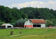 有绿色圆的屋顶的老谷仓 免版税图库摄影