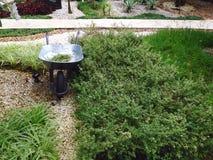 有绿色庭院的从事园艺的汽车 库存照片